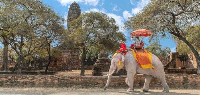 Let's Go, Ayutthaya A World Heritage City